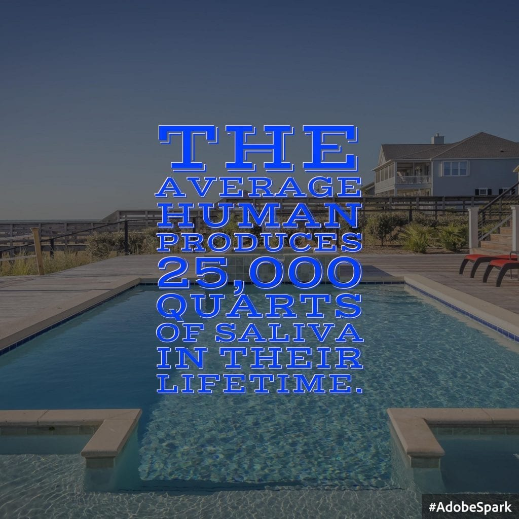 Average Human 25000 Quarts Siliva Lifetime Two Swimming Pools