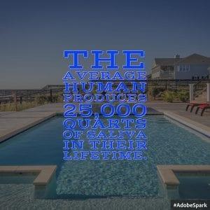 Average Human 25000 Quarts Siliva Lifetime Two Swimming Pools